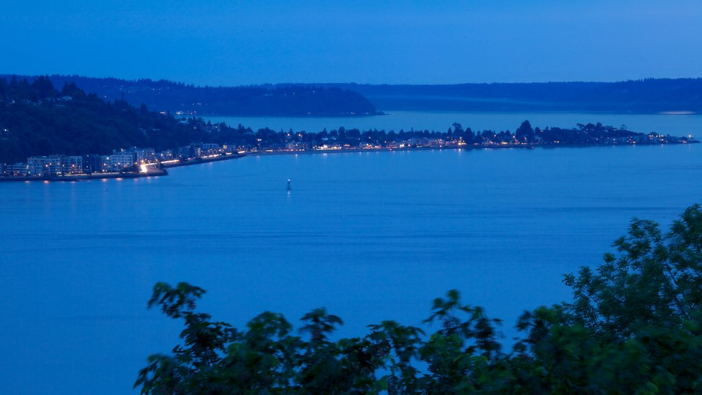 Kerry Park featuring general coastal views, landscape views and night scenes