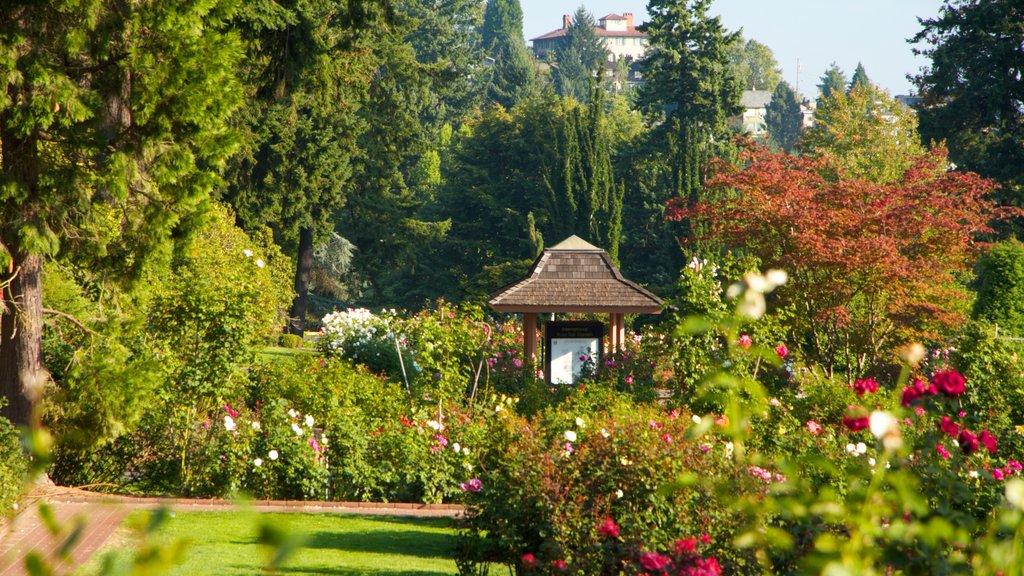 International Rose Test Garden featuring a park, flowers and landscape views