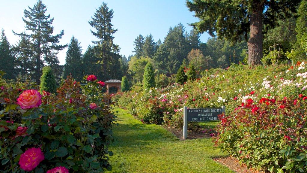 International Rose Test Garden featuring wildflowers, a garden and landscape views