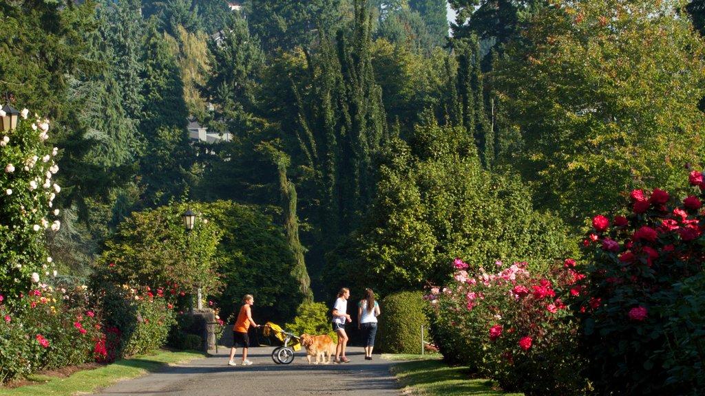 International Rose Test Garden featuring flowers, a garden and landscape views