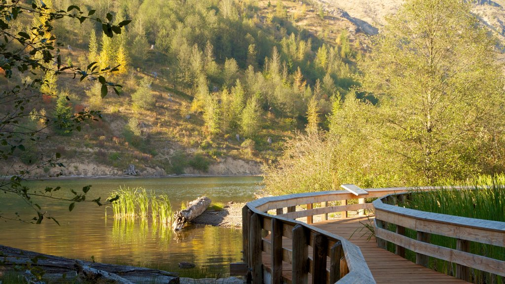 Mount St. Helens which includes landscape views, a lake or waterhole and a bridge