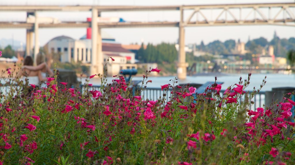 Tom McCall Waterfront Park which includes a bridge, wildflowers and flowers