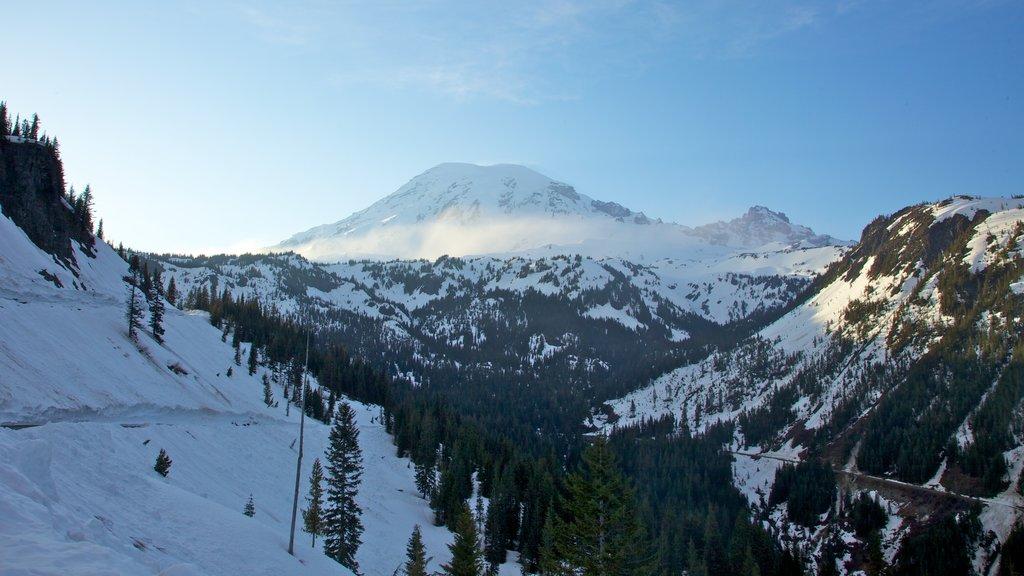 Mount Rainier National Park featuring landscape views, snow and mountains