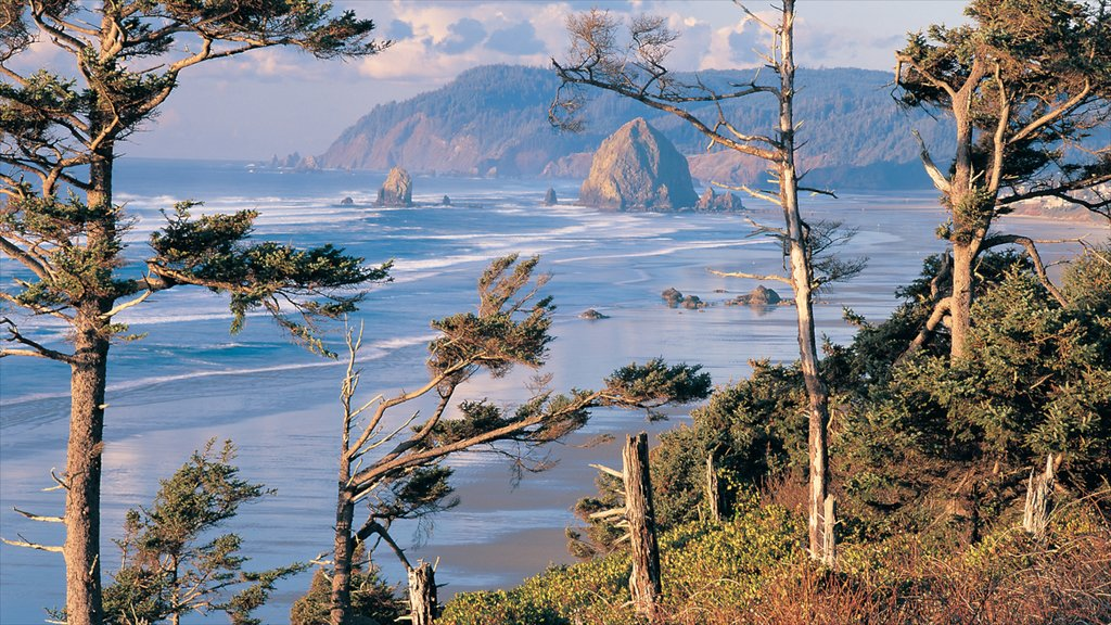 Cannon Beach showing a beach and landscape views