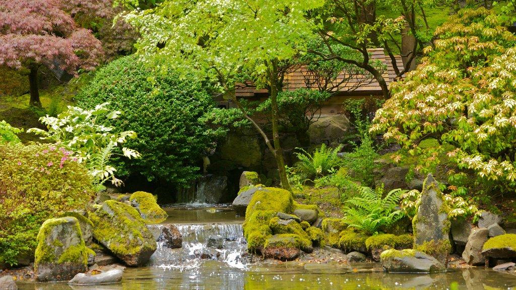 Portland que incluye vistas de paisajes y un jardín