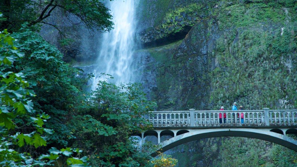 Portland showing a cascade, landscape views and a bridge