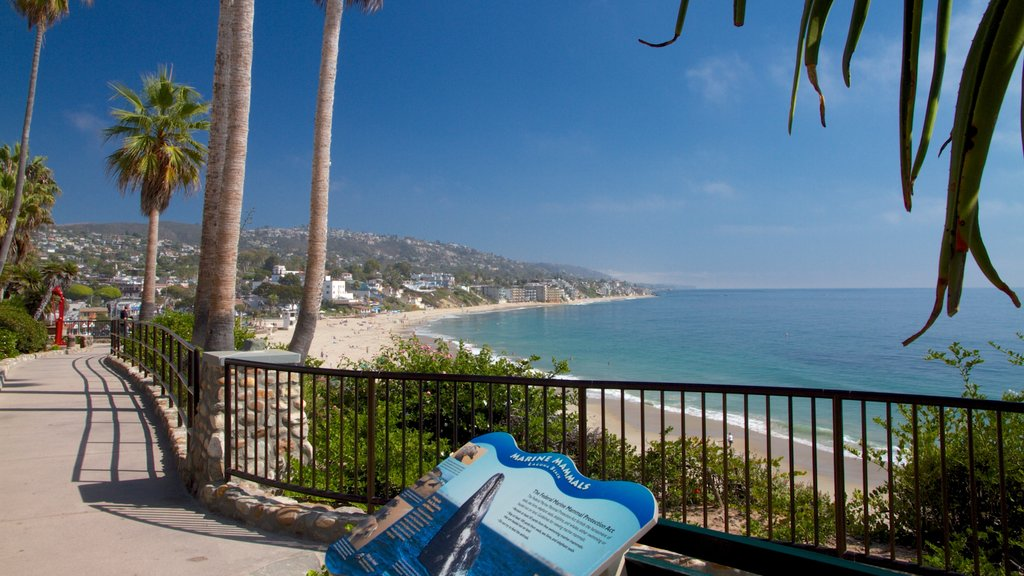 Laguna Beach which includes a coastal town, tropical scenes and landscape views