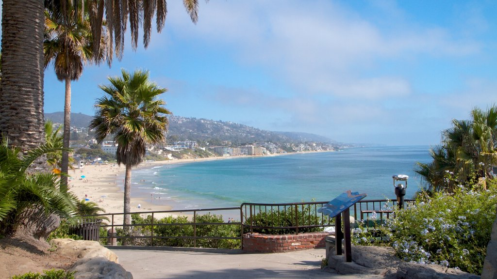 Laguna Beach featuring tropical scenes, views and a coastal town