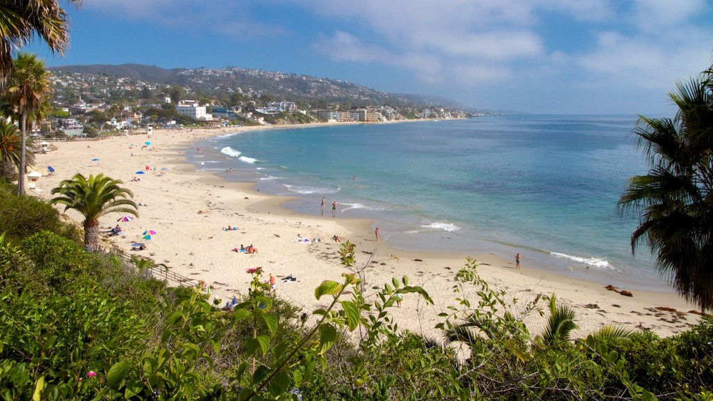 Laguna Beach showing a sandy beach and landscape views