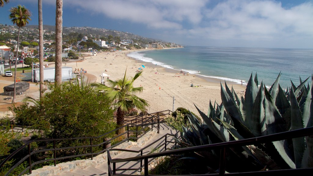 Laguna Beach showing a beach and landscape views