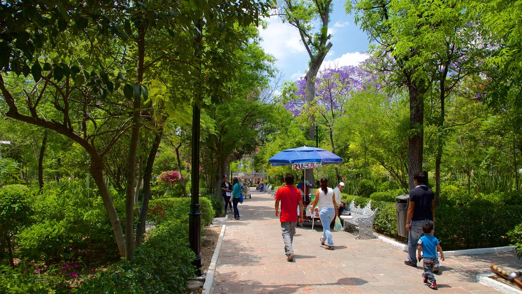 Aguascalientes which includes a park as well as a family