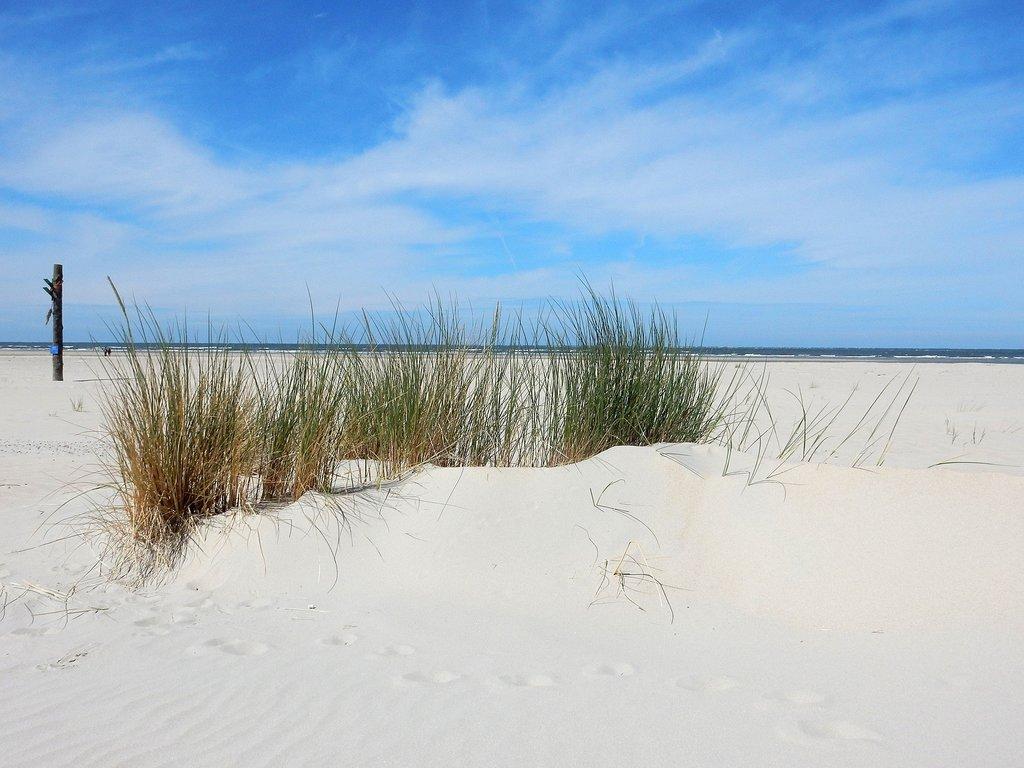 nordsee_baltrum_strand.jpg?1590025590