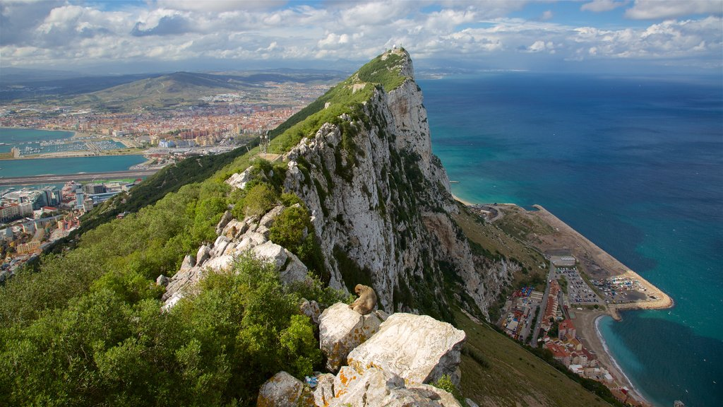 Rock of Gibraltar which includes general coastal views, mountains and landscape views