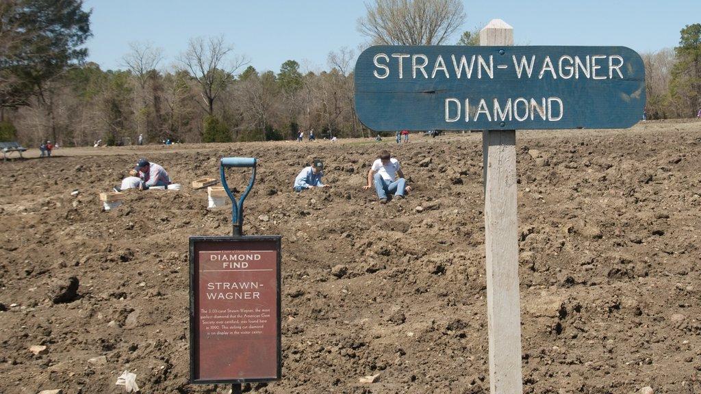 Crater of Diamonds State Park ofreciendo señalización y vistas de paisajes y también un pequeño grupo de personas
