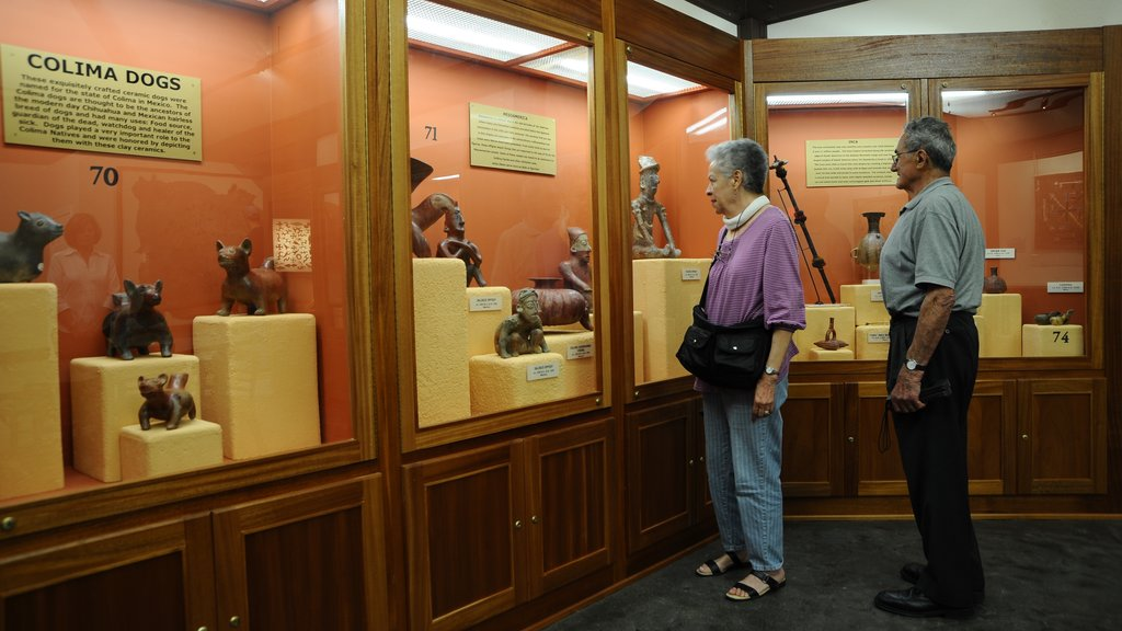 Museum of Native American History which includes interior views as well as a couple