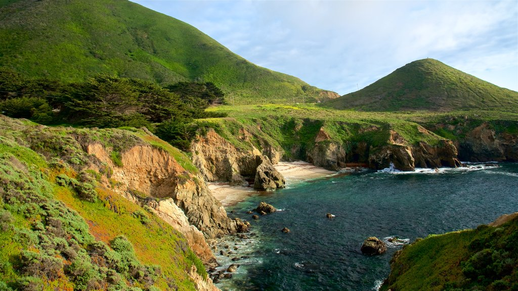 Playa Garrapata ofreciendo vistas generales de la costa, escenas tranquilas y costa rocosa