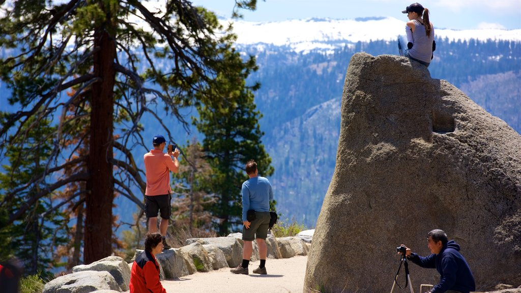 Glacier Point featuring tranquil scenes and views as well as a small group of people