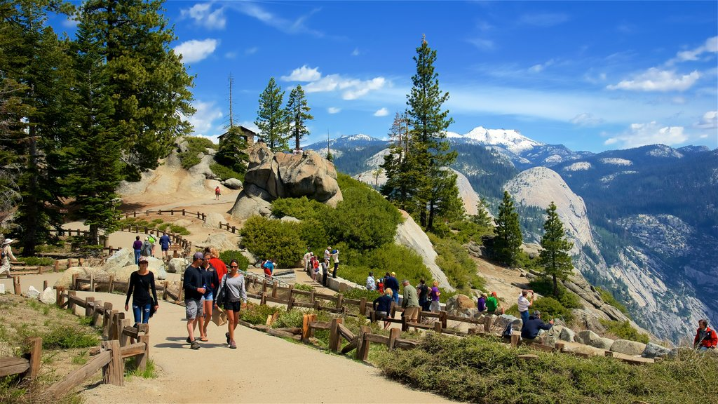 Glacier Point featuring hiking or walking and tranquil scenes as well as a small group of people