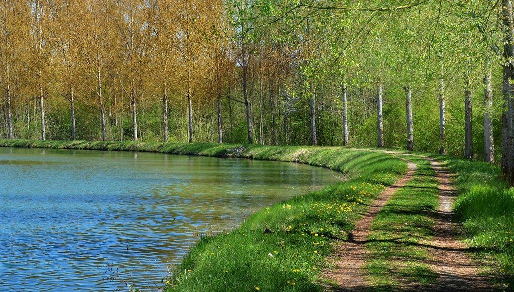 MEUSE_river-5087743_1920.jpg?1591529716