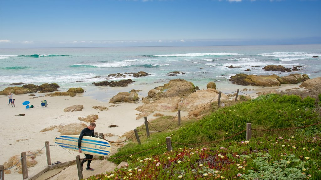Asilomar State Beach showing rocky coastline, general coastal views and a sandy beach
