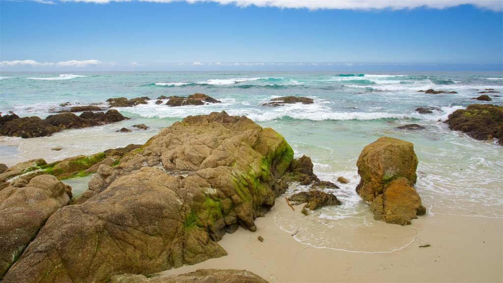 Asilomar State Beach which includes rugged coastline and a beach