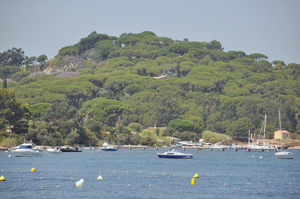 83990 Saint-Tropez, France By Андрей Бобровский, CC BY 3.0, https://commons.wikimedia.org/w/index.php?curid=53757058