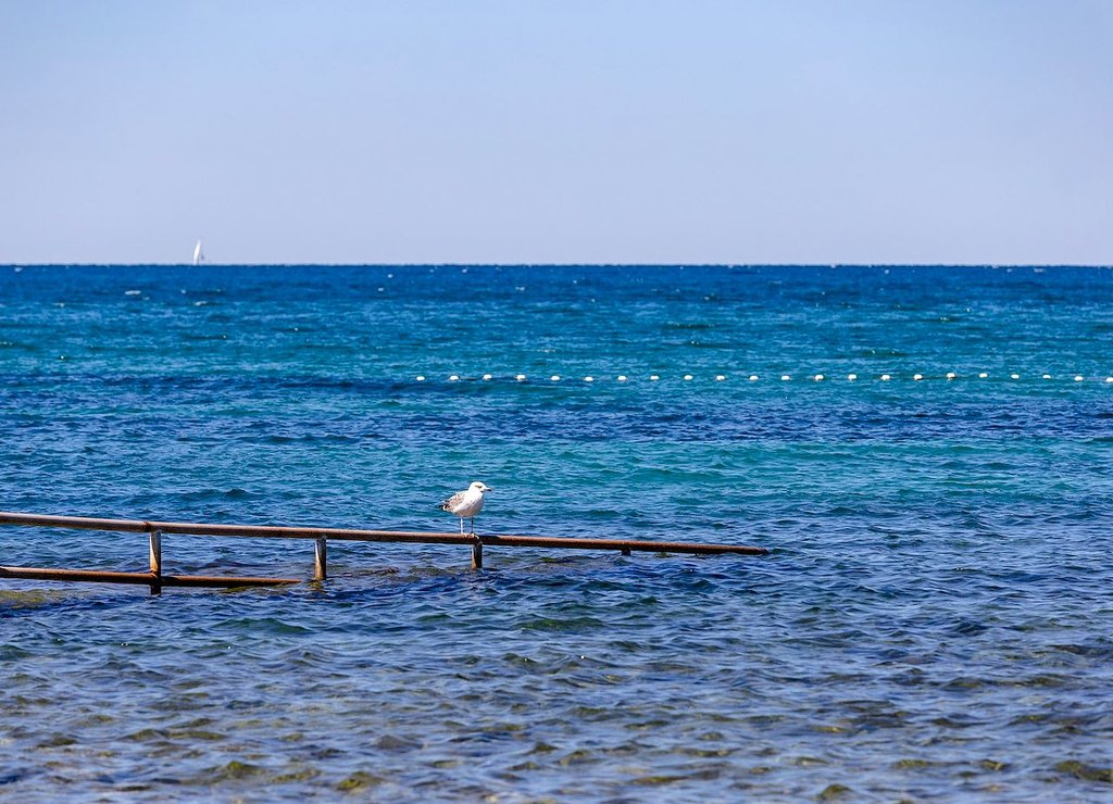 Umag, Istria, Croazia By Michal Klajban - Own work, CC BY-SA 4.0, https://commons.wikimedia.org/w/index.php?curid=74916834