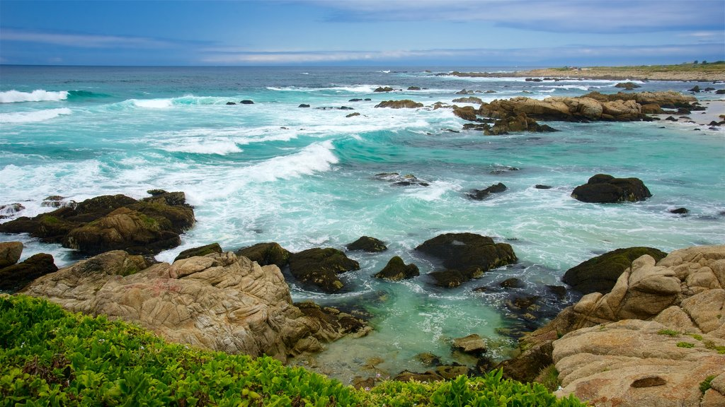 17-Mile Drive showing waves and rocky coastline