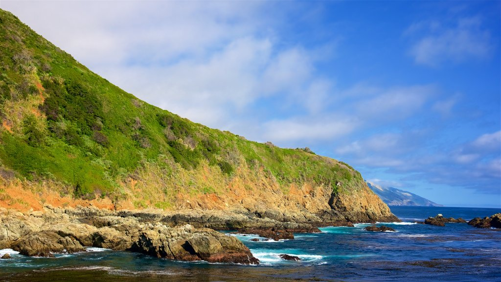 Partington Cove featuring mountains and rocky coastline