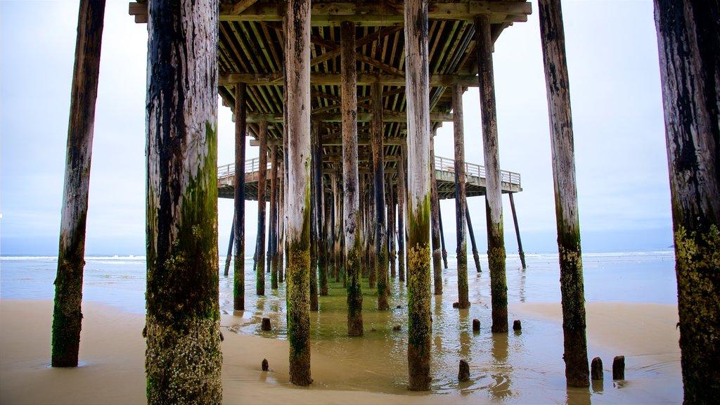 Pismo Beach Pier showing a beach