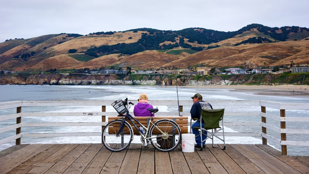 Pismo Beach Pier showing fishing as well as a small group of people