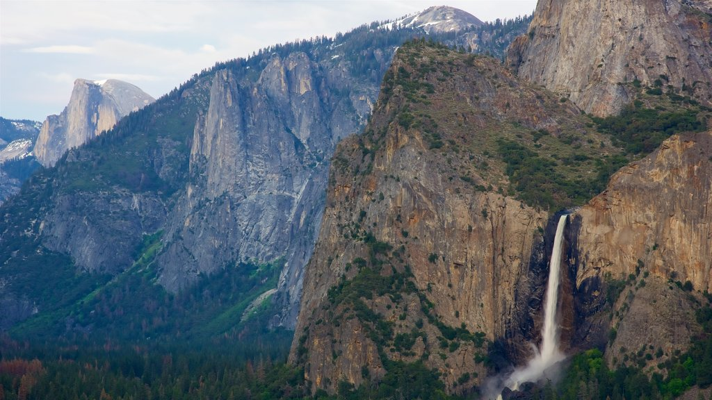 Bridalveil Falls showing mountains, a cascade and forests
