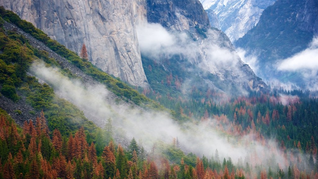 Tunnel View which includes fall colors, forest scenes and mountains