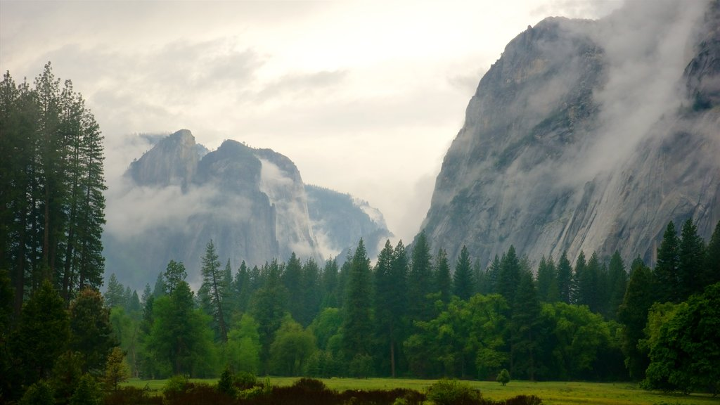 Yosemite National Park featuring landscape views, tranquil scenes and mist or fog
