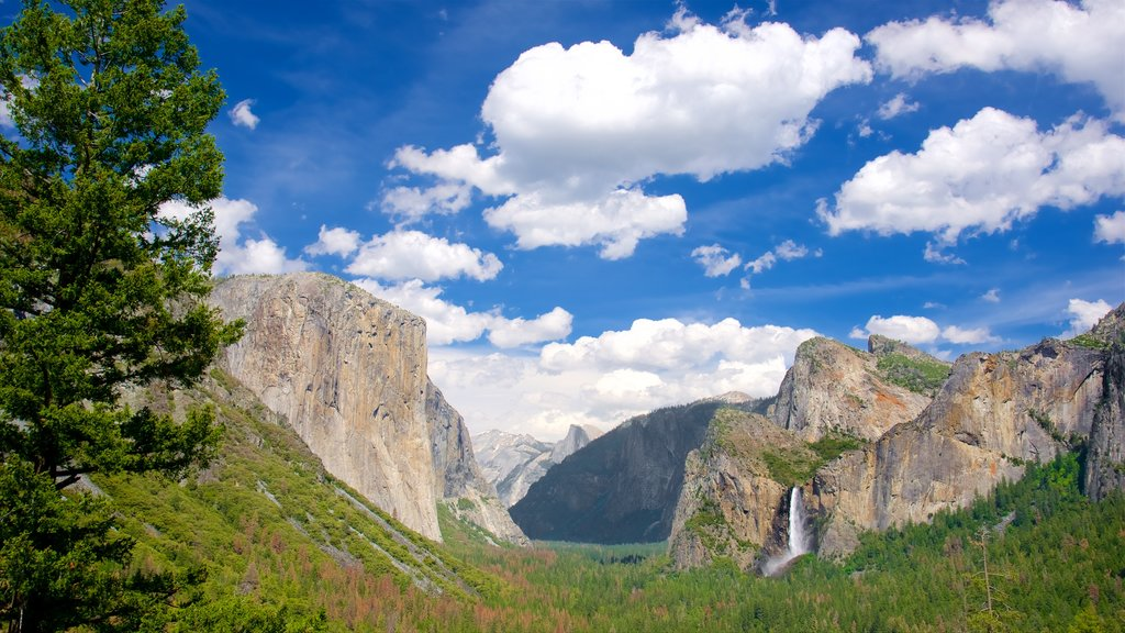 Tunnel View which includes forest scenes, mountains and landscape views