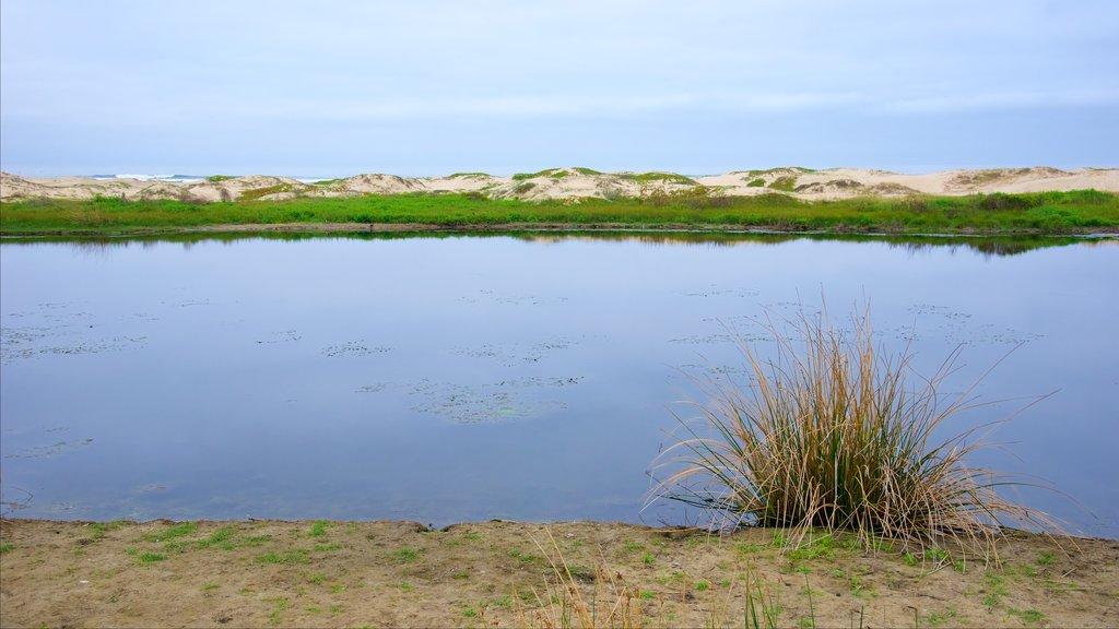 Pismo Beach showing a lake or waterhole