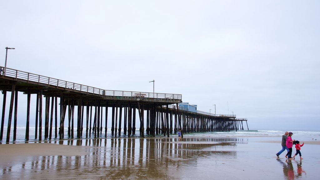 Pismo Beach Pier showing a beach as well as a small group of people