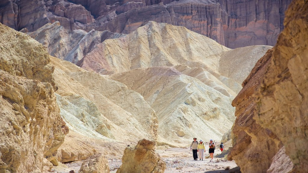 Death Valley which includes a gorge or canyon and desert views as well as a small group of people