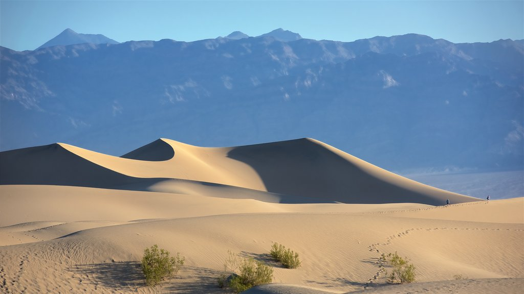 Death Valley which includes tranquil scenes, landscape views and desert views