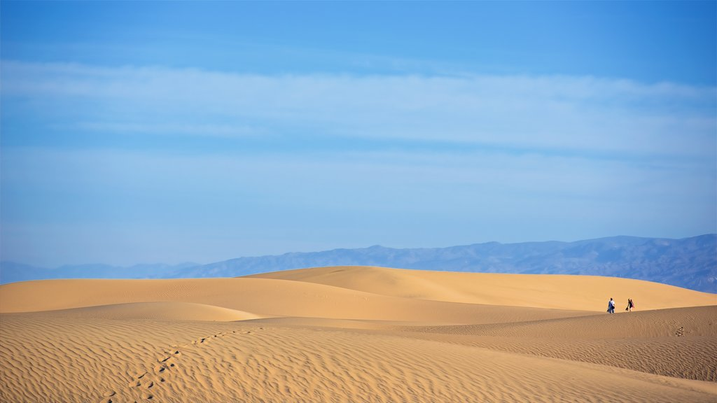 Mesquite Flat Sand Dunes which includes desert views and landscape views