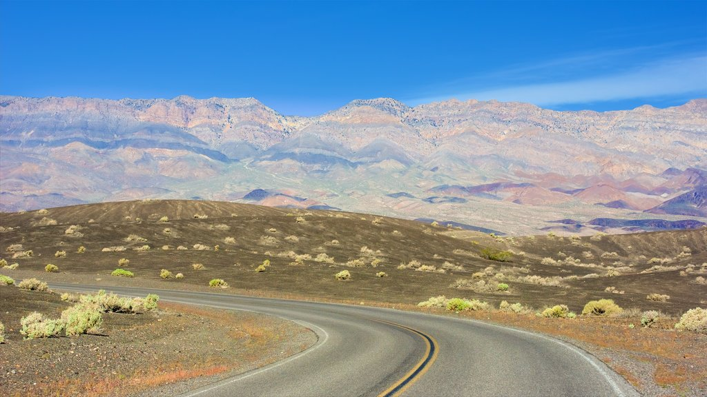 Death Valley showing tranquil scenes and landscape views