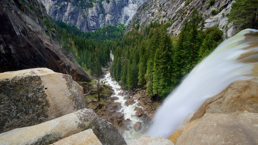Vernal Falls showing a cascade, forests and a gorge or canyon