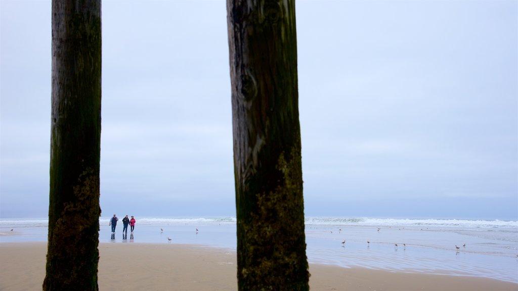 Pismo Beach Pier showing a sandy beach