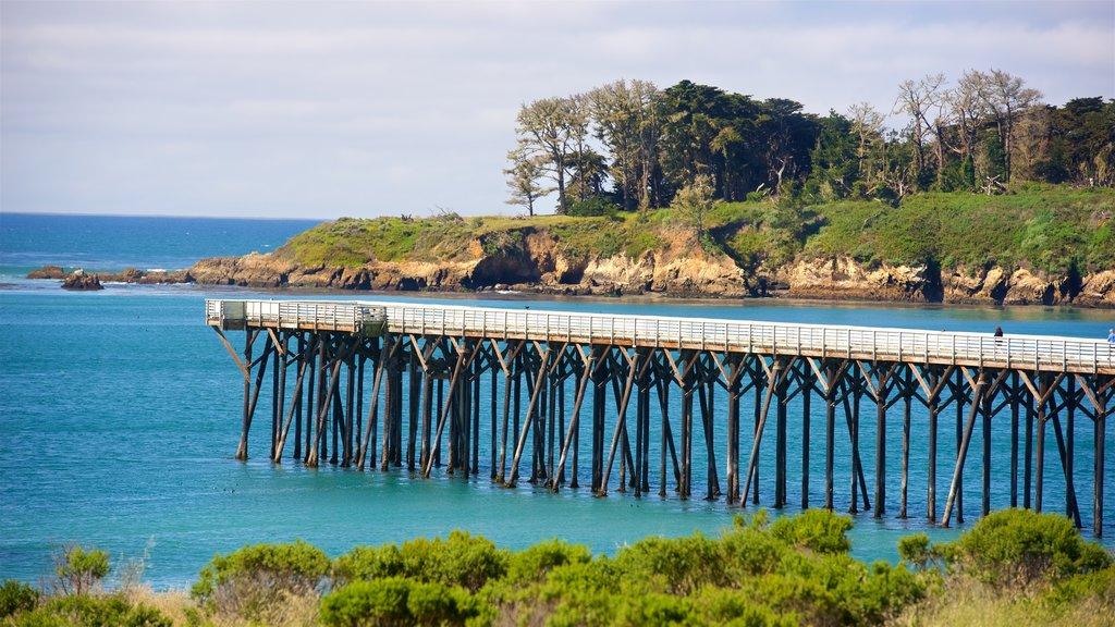 San Simeon Pier which includes general coastal views