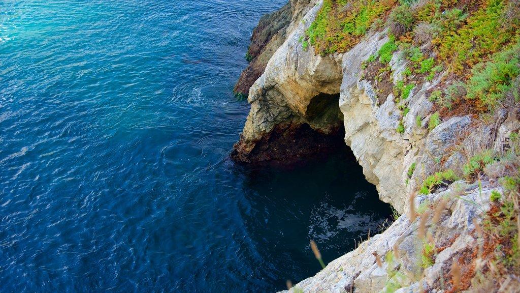 Cala Partington que incluye vistas generales de la costa y costa escarpada