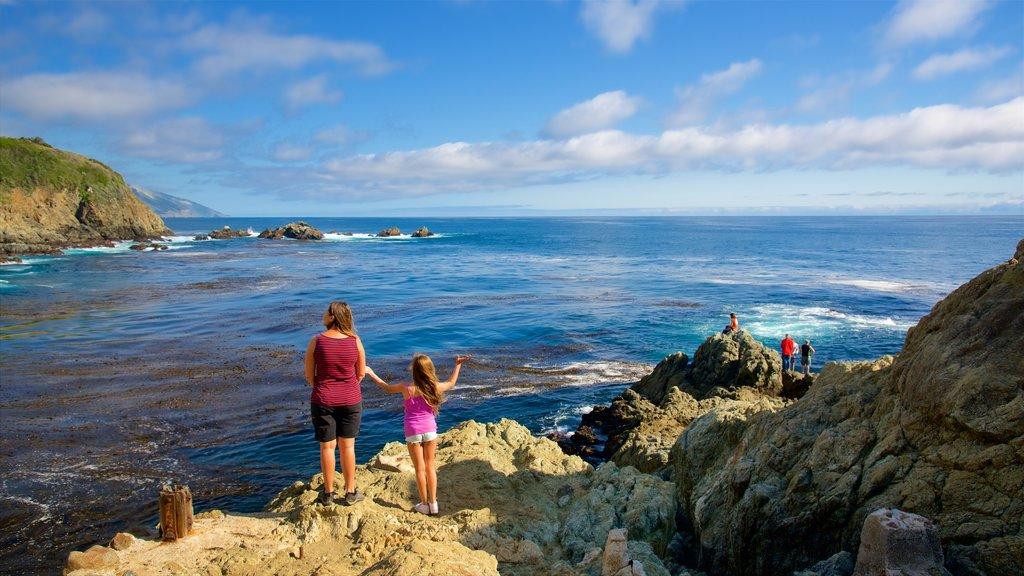 Cala Partington que incluye vistas generales de la costa y costa rocosa y también un pequeño grupo de personas