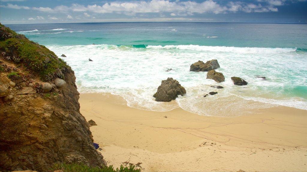 Garrapata Beach featuring a beach