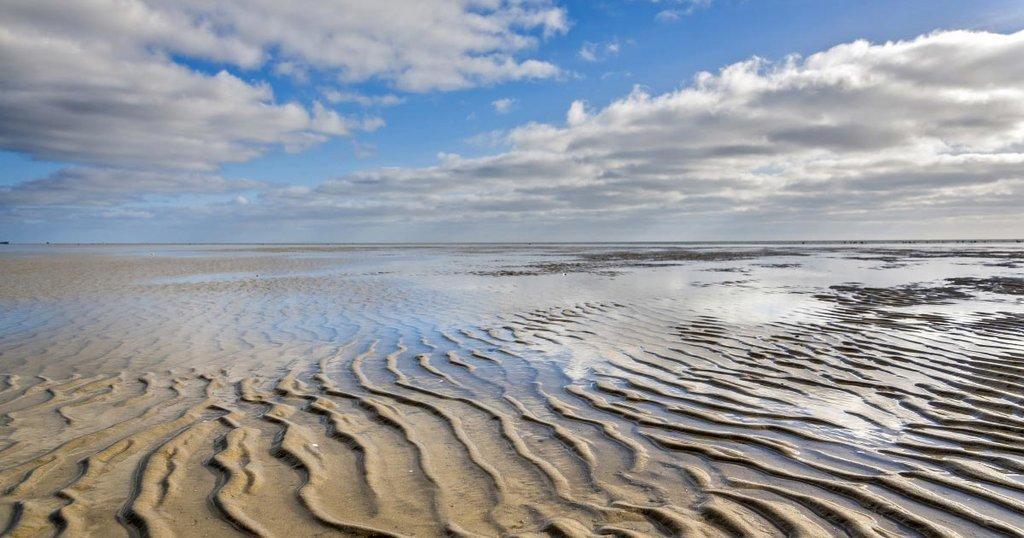 Wattenmeer: Geheimtipp Pellworm an der Nordsee