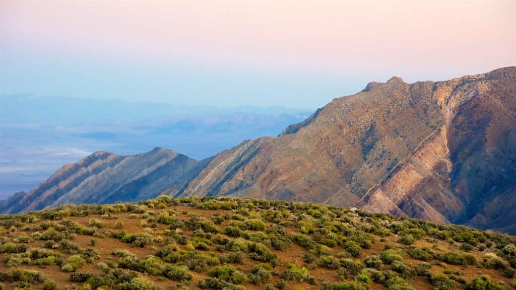 Death Valley featuring landscape views, tranquil scenes and a gorge or canyon