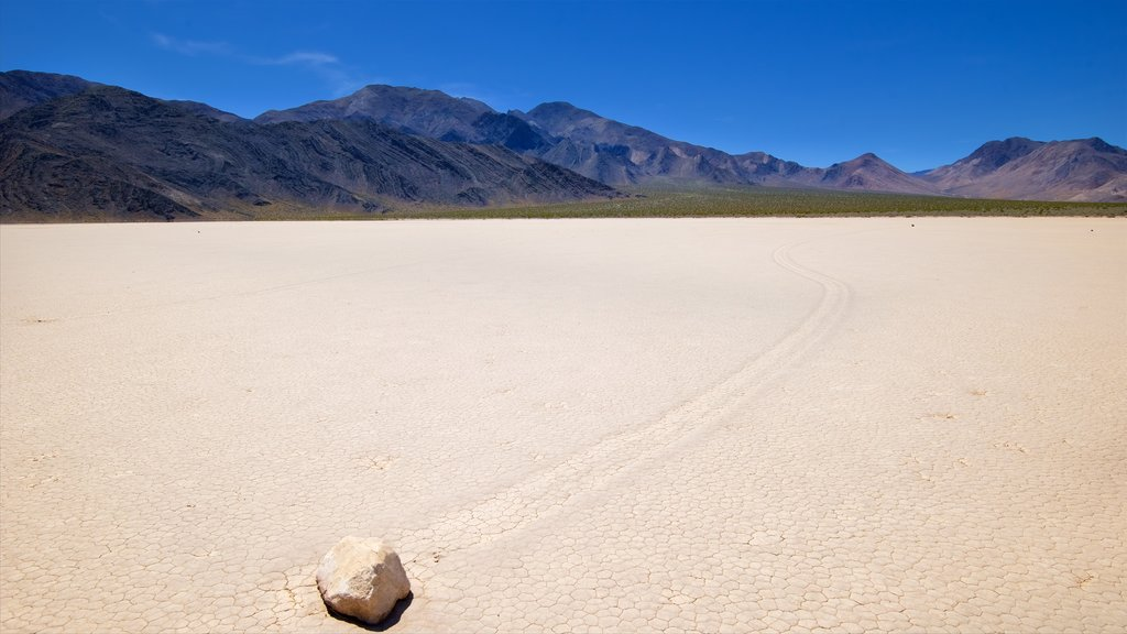 Racetrack Playa featuring landscape views and desert views